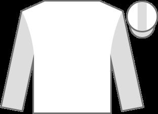 Default Jockey Silk